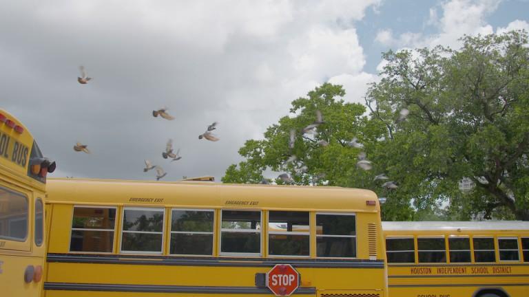 a-generation-found-school-bus